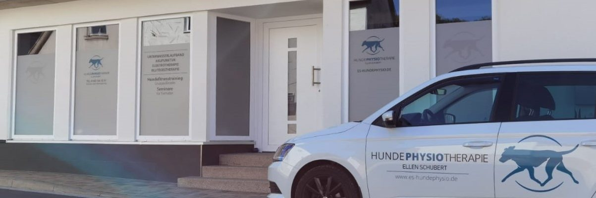 Mobile Hundephysiotherapie